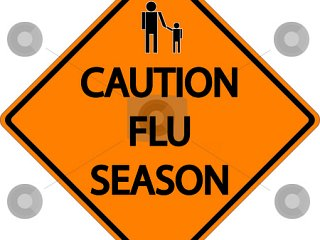 Flu Facts
